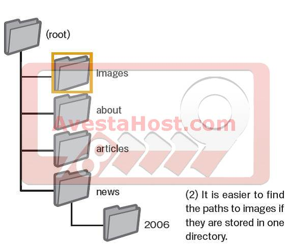 ذخیره کردن تصاویر در دایرکتوری مجزا