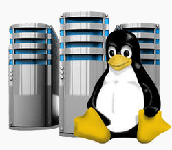 linux-hosting-services